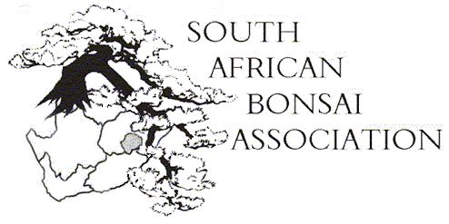 South African Bonsai Association
